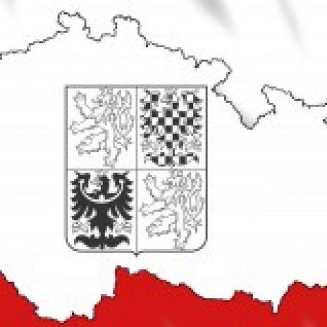 Rychle česky
